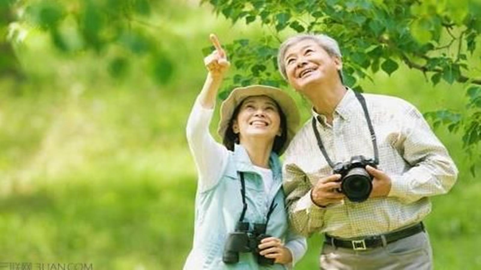哪个地区老年人最爱出游?上海老年人排在前三甲