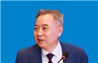 """徐洪才:以""""一带一路""""为平台 共建开放包容的世界经济"""
