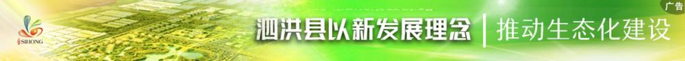 2019泗洪县生态化建设